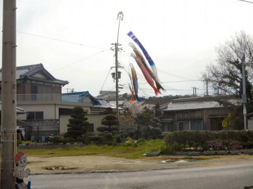 川尻谷のこいのぼり。 この広場は、春はだんじり唄のお披露目場、夏はラジオ体操の場所。