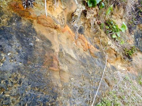 粘土質の土。 昔は津井の土を使って瓦を作っていたそうです。 燃料である亜炭も津井で掘り出していたそうで、今でも炭鉱が残っているとか。