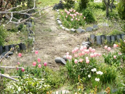 花壇や畑でも、瓦を使っている様子をしばしば見かけます。