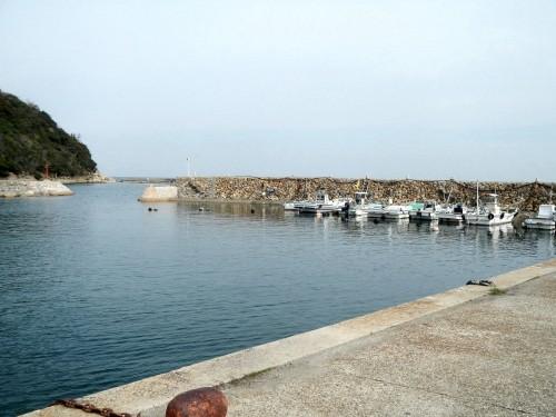 津井港。津井にもちゃんと港がありますよ。 となり町の湊(みなと)と紛らわしいので、港湾(こうわん)という呼び名がついています。 ここの堤防は珍しい石積み式で、この不思議な景色を見ていると時間をタイムスリップした気分にさせてくれます。
