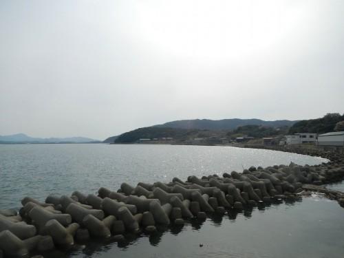 中津浦。小さな海水浴場があり、去年の夏は何度も泳ぎに来ました。 地元の幼稚園もここに遊びに来ます。