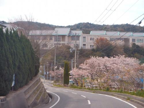 瓦葺きがきれいな辰美小学校。 引越し前に忍び込んで、勝手に見学しましたが、とてもきれいな新しい学校です。