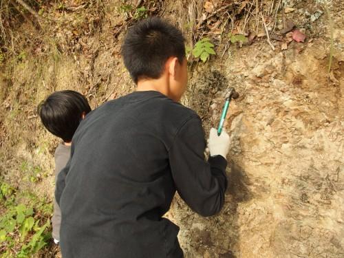 登り始めの崖を発掘中。 壁を狙っているうちは、まだまだ素人。