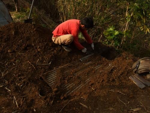 翌朝、トタンの上の土をどかし、期待と不安の確認作業
