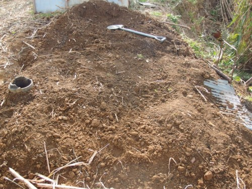土をかぶせて準備完了