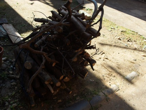 今回の炭材。近所の倒木から切り出してきました。