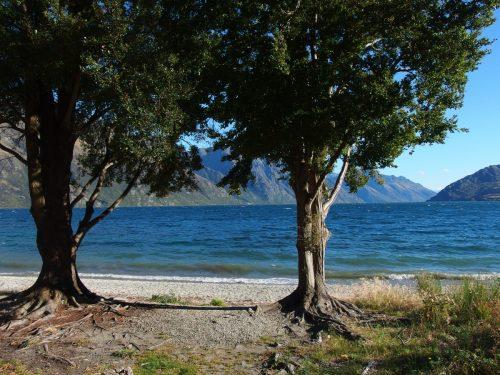 ワカティプ湖にあるピクニックスペース。 夏だったら泳いで楽しめるんだろうなー。